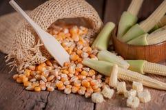 Maïs de graine et maïs de bébé sur le fond en bois de table Photographie stock libre de droits