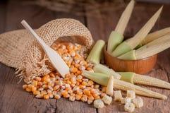 Maïs de graine et maïs de bébé sur le fond en bois de table Image libre de droits
