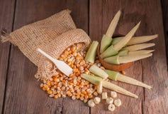 Maïs de graine et maïs de bébé sur le fond en bois de table Photo libre de droits