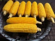 Maïs de gril Photographie stock libre de droits