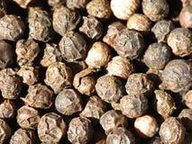 Maïs de poivre noir Image stock