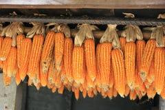 Maïs de séchage dans le village de l'Asie de l'Est photographie stock libre de droits
