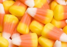 Maïs de sucrerie Images libres de droits