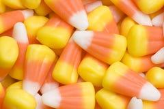 Maïs de sucrerie Photos stock
