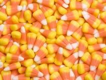 Maïs de sucrerie Photo stock