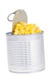 Maïs en boîte Photo stock