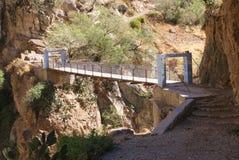 Maïs en canyon de Colca, Pérou image libre de droits