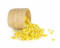 Maïs entier doux de noyau sur le fond blanc Photo libre de droits