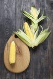 Maïs et bois Image libre de droits