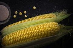 Maïs et sel crus organiques photos libres de droits