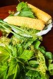 Maïs et verts Photographie stock
