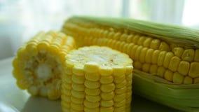 Maïs frais de la ferme Mangez bien banque de vidéos