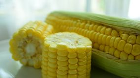 Maïs frais de la ferme Mangez bien clips vidéos
