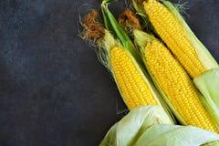 Maïs frais, juteux, cru sur un fond noir photos stock