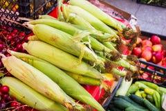 Maïs frais sur des épis images stock