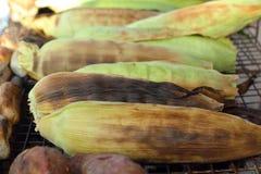 Maïs frais sur le gril Photographie stock libre de droits