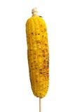 Maïs grillé photos libres de droits