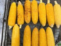 Maïs grillé Photographie stock