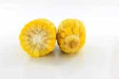 Maïs jaune image libre de droits