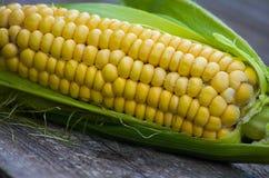 Maïs jaune de manière opérationnelle Image libre de droits