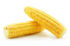 Maïs jaune mûr d'isolement sur le blanc image stock
