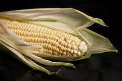 Maïs op zwarte royalty-vrije stock afbeelding