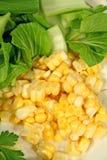 Maïs outre de l'épi Image libre de droits