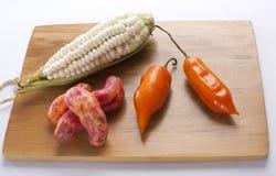 Maïs, piment et olluco Photos stock