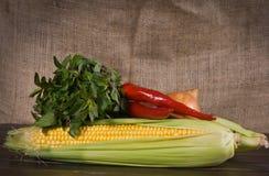 Maïs, poivre, oignon et menthe Photos libres de droits