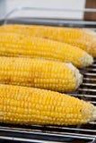 Maïs s'étendant sur le barbecue Photo libre de droits