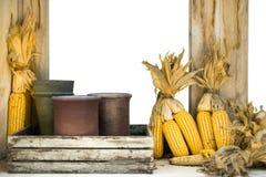 Maïs sec à la fenêtre en bois photo stock