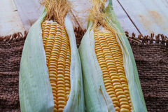 Maïs sur la table Images stock