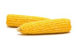 Maïs sur le fond blanc Photo libre de droits