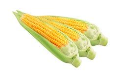 Maïs sur le fond blanc d'isolement photographie stock libre de droits