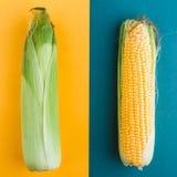 Maïs sur un fond jaune-bleu Épis ouverts et fermés Configuration plate Concept de nourriture photographie stock