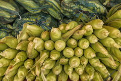 Maïskolven bij markt stock fotografie