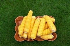 Maïskolven en schil op het gras stock afbeelding