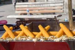 Maïskolven gepelde pitten stock foto
