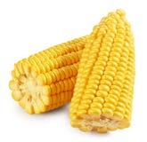 Maïskolven pitten stock afbeelding