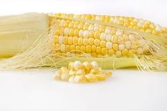 Maïskolven Pitten met Maïskolf op de Achtergrond stock foto's