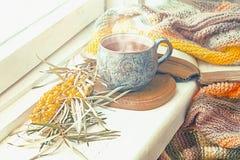 Mañana acogedora del otoño en casa Imágenes de archivo libres de regalías