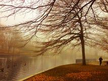 Mañana brumosa Imagen de archivo libre de regalías