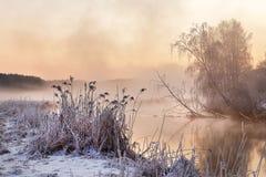 Mañana brumosa del invierno en el río Escena de niebla y escarchada rural Foto de archivo