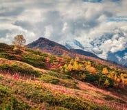Mañana brumosa del otoño en las montañas del Cáucaso Fotografía de archivo