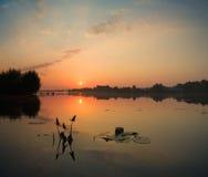 Mañana brumosa del verano en el río Imagen de archivo