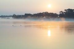 Mañana brumosa del verano en el río Fotos de archivo