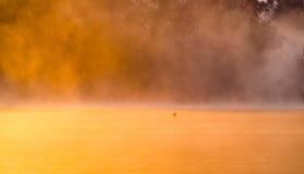 Mañana brumosa del verano en el río Imagen de archivo libre de regalías