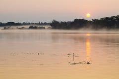 Mañana brumosa del verano en el río Foto de archivo