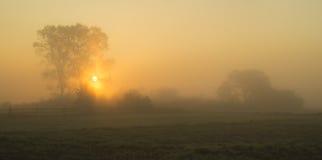 Mañana brumosa en el campo Fotos de archivo libres de regalías