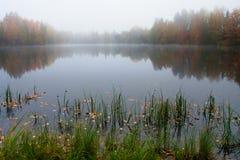 Mañana brumosa en el lago Imagen de archivo